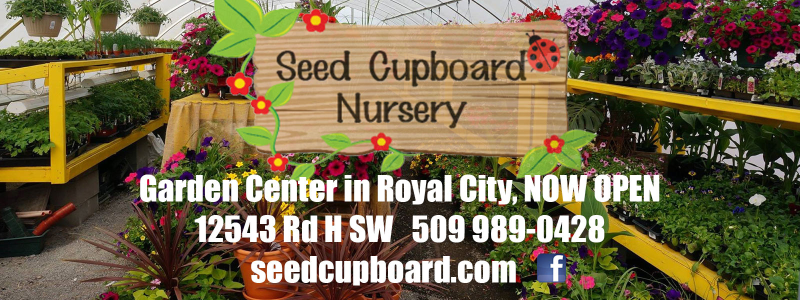 Seed Cupboard